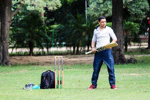 Cricket, Employee, Play, Indian