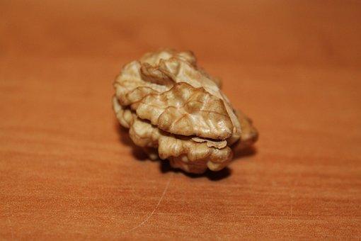 Nut, Walnut, Fruit Bowl, Close, Autumn, Brain, Walnuts
