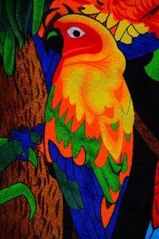 Parakeet, Colorful, Bird, Animal, Towel, Bath Towel