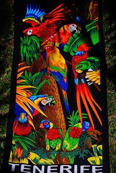 Towel, Bath Towel, Colorful, Color, Bench Towel, Terry