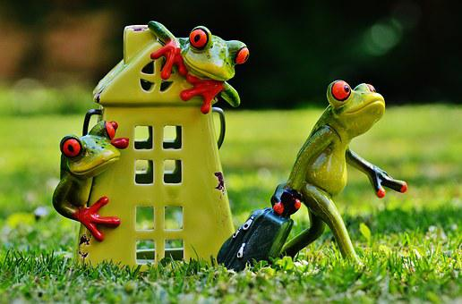 Frogs, Farewell, Home, Cute, Frog, Funny, Fig, Sweet