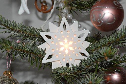 Star, Fir, Christmas, Fir Branch, Garland