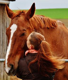 Horse, Smooch, Love For Animals, Feel At Home, Girl