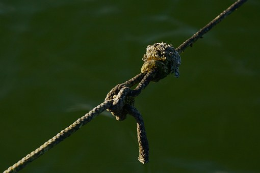 Knot, Connection, Dew, Rope, Fixing, Old, Strand, Leash
