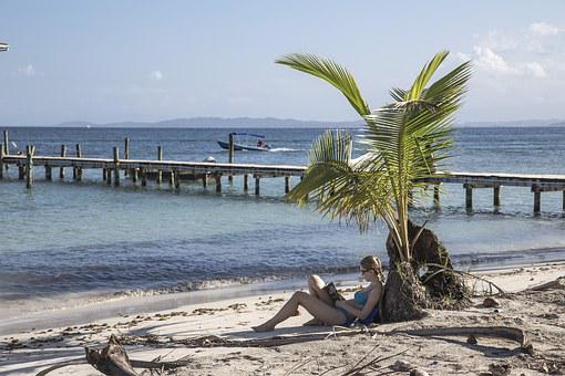 Beach, Sand, Orange, Cloudy, Palm, Tree, Nature, Ocean