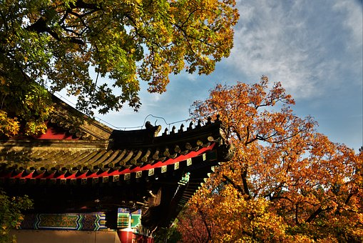 Autumn, Ancient Architecture, Roof, Red Leaves