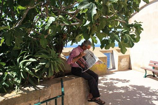 Old Man, Tree, Shadow, Read Newspaper, Morning, Relax