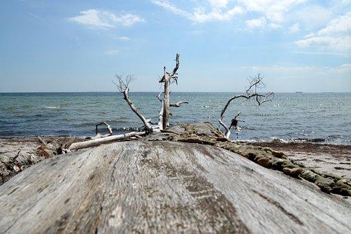 Sea, Boot, Port, Ship, Maritime, Beach, Dew, Bollard