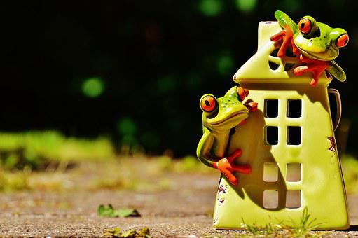 Frogs, Home, Funny, Cute, Sweet, Decoration, Fig, Frog