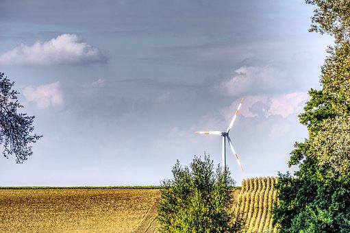 Tree, Pinwheel, Wind Power, Energy, Blue