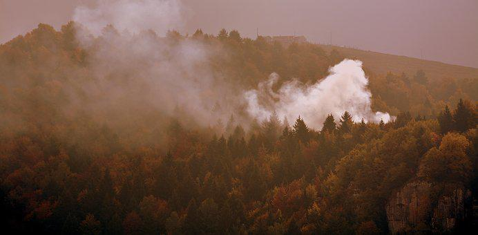 Fire, Forest, Autumn, Fog, Mist, Mountain