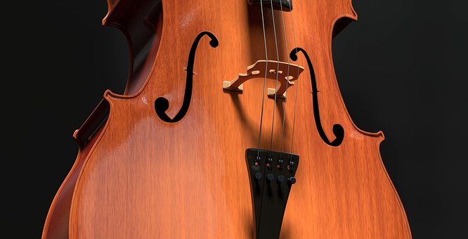 Cello, Strings, Stringed Instrument, Detail, Wood