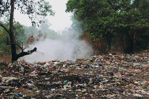 Garbage, Stinky, Dump Site, Woods, Smoke, Trash, Smell