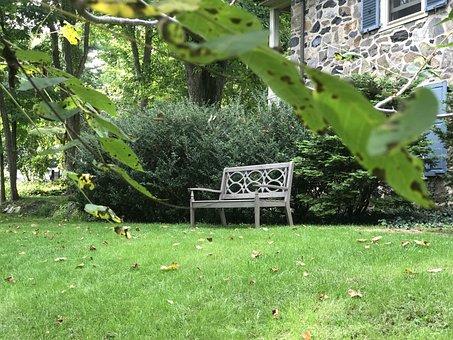 Garden, Bench, Green, Yard, Seat, Alone, Nature