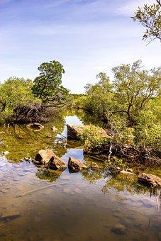 Dead Mans Creek, Magnetic Island, Salt Creek