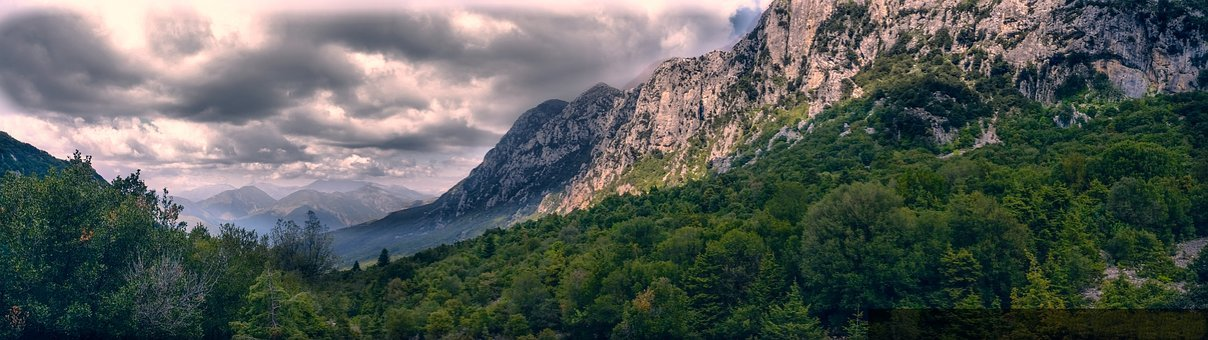 Tack Her Up, Mountain, Forest, Clouds, Trees, Sky