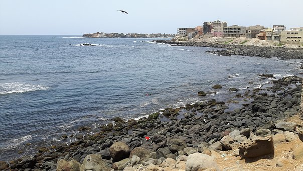 Dakar, Senegal, Bay Carp, Almadie