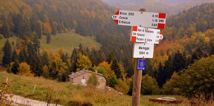 Signal, Crossroads, Excursion, Forest, Trees, Autumn