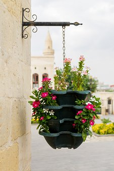 Flower Basket, Flower, Beautiful, Colorful, Old Town