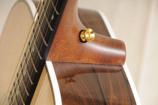 Guitar, Acoustic, Strings, Zircote, Acoustic Guitar
