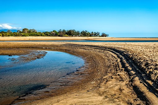 Tides Out, Saunders Beach, Mangrove Area