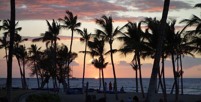 Tropical, Kona, Hi, Hawaii, Sunset, Beach, Palm, Trees