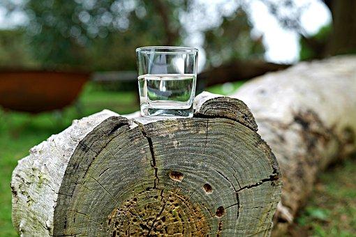 Glass Of Water, Refreshment, Chopped Trunk, Lumberjack