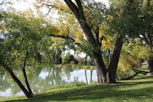 Cottonwood Park, Cottonwood, Greeley, Colorado