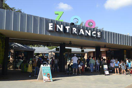 Herman Park Zoo, Entrance, Houston, Texas, Animals