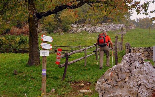 Signal, Excursion, Walk, Mountain, Indication, Autumn