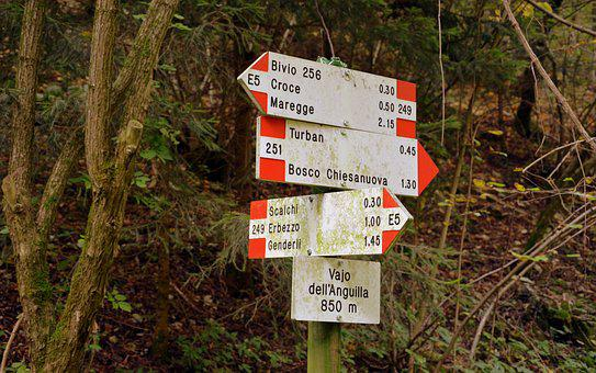 Signal, Indications, Excursion, Trail, Forest, Autumn