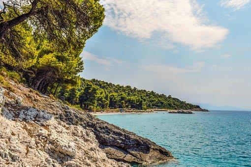 Greece, Skopelos, Kastani Beach, Trees, Island, Greek