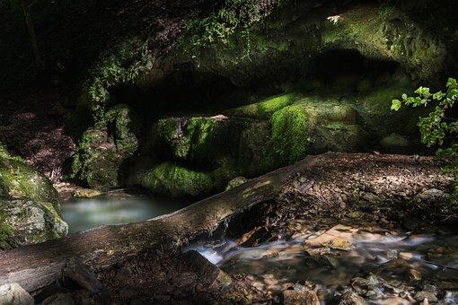 Forest, Lake, Rocks, Strange, Nature, Water, Eyes