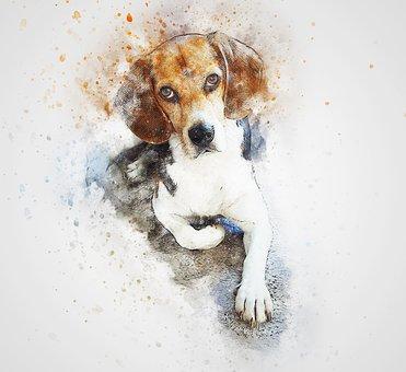 Dog, Beagle, Pet, Art, Abstract, Watercolor, Vintage