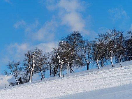 Landscape, Winters, Hill, Snow, Field, Cold
