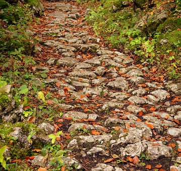 Trail, Stones, Autumn, Sassi, Excursion