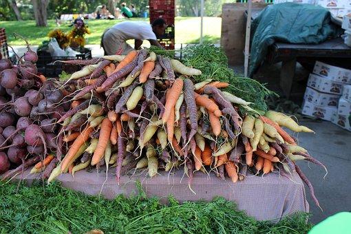 Carrots, Color, Boulder
