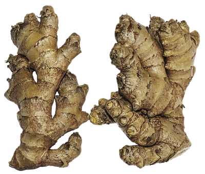 Ginger, Rhizome, Ginger Root, Zingiber Officinale