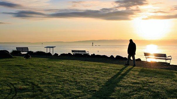 Sunrise, Autumn, Spacer, Lake, Dawn, Morning Sun
