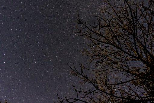 Night, Starry Sky, Star, Night Sky, Dark, Universe
