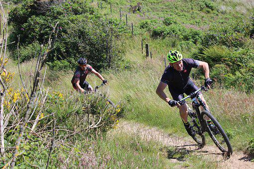 Mtb, Mountain Bike, Sports, Active, Training, Landscape