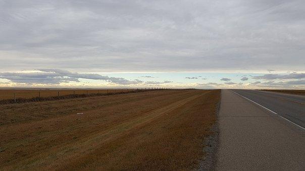 Alberta, Prairie, Fields, Field, Wheat, Prairies