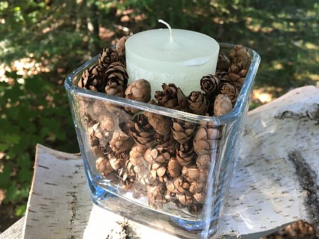 Outdoor Decor, Hemlock Cones, Hemlock, Hemlock Tree