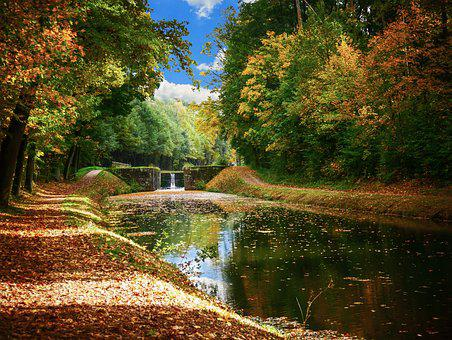Landscape, Nature, Forest, Trees, Channel, Water
