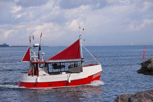 Fishing Boat, Sea, Fishing, Sailing, Sail, Fish