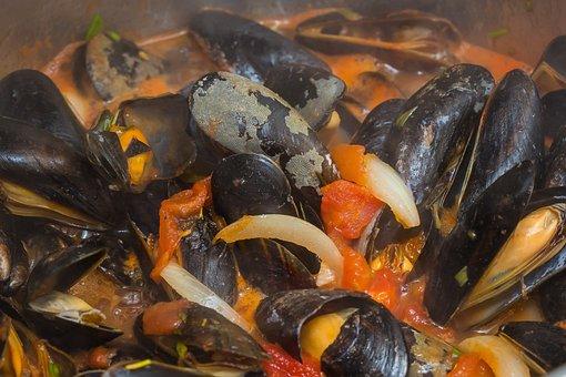 Shell, Mussel, Seashell, Sea Animals