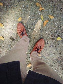 Shoe, Leaf, Brown, Clasic