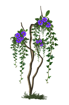 Image Cropped, Tree With Flowers, Tree, Flowers Lilac