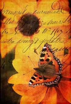 Flower, Flora, Butterfly, Handwriting, Writing
