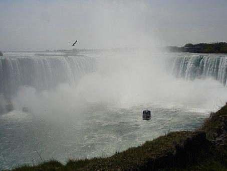 Niagara If, Canada, Waterfall, Boat, Seagull, Water